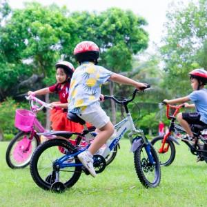Xe đạp TOTEM – Xe đạp cho cả gia đình